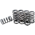 1490 Single Hi-Rev Valve Springs - 40hp-later (set of 8)